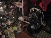 Befana Christmas display at the house of Andrew Coombs (Grim Trails Haunted Attraction)