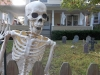 Welcome to Hillcrest, Plastic Skeleton Capitol of the World