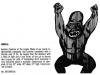 Funni-Frite: The Gorilla